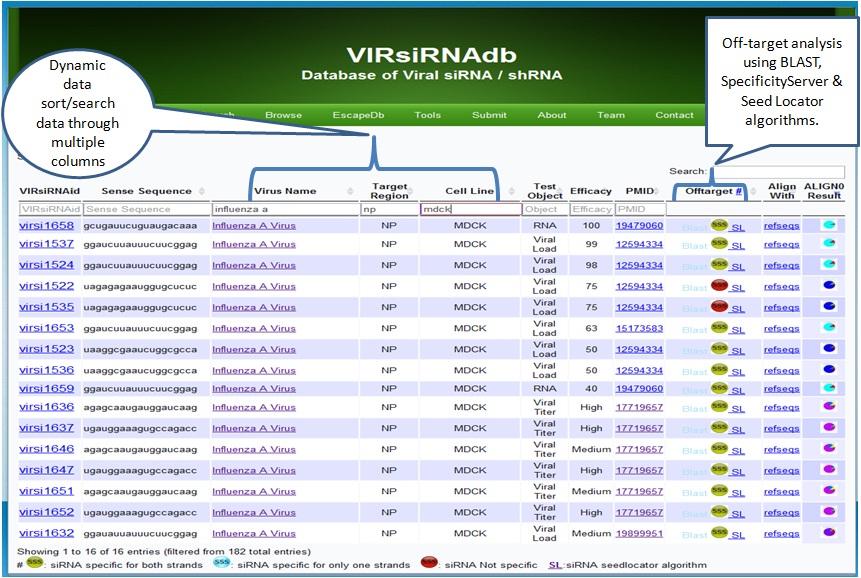Advertisement Virus